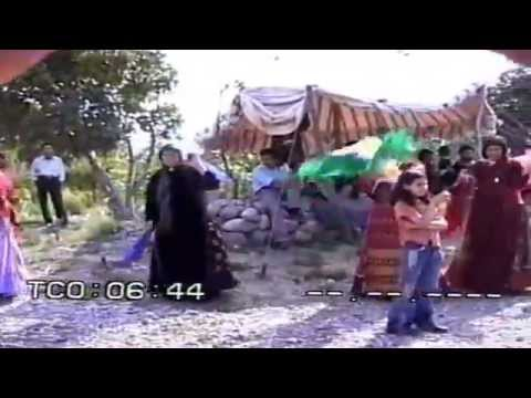 عروسی قشقایی در ممو(استان فارس) Aroosi ghashghaie