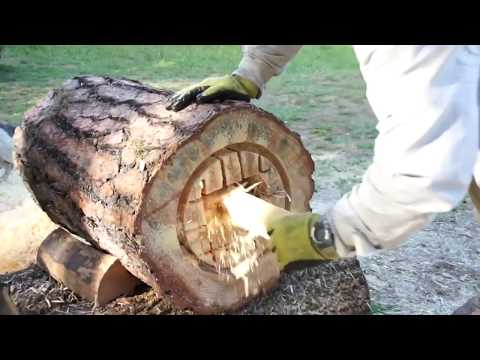 Art of Log Hive by Creative People. Interesting Video 😍