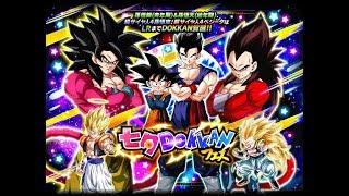 LR Tanabata Celebration Summons Testing Banner 350 Stones | Dragon Ball Z Dokkan Battle JP