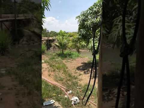 Bán đất Bình Thuận giá rẻ