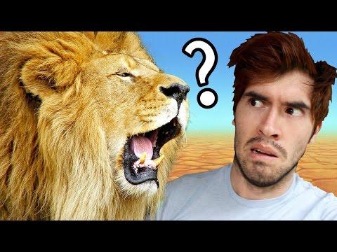¿Ser O No Ser Comido Por Un León?   Would You Rather - JuegaGerman