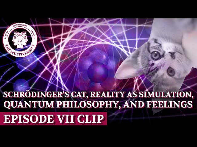 Schrödinger's Cat, Reality as Simulation, Quantum Philosophy, and Feelings