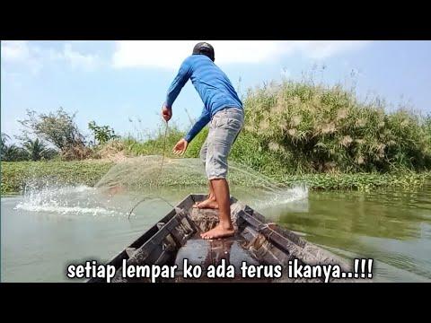 Download Menjala ikan pakai perahu Hasilnya...!!!Alhamdulillah.