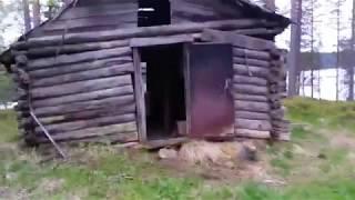 Карелия. Суоярвский район. Вегарус. Путь на озеро