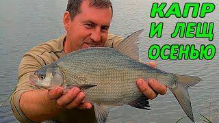 Рыбалка ОСЕНЬЮ на КАРПА и ЛЕЩА