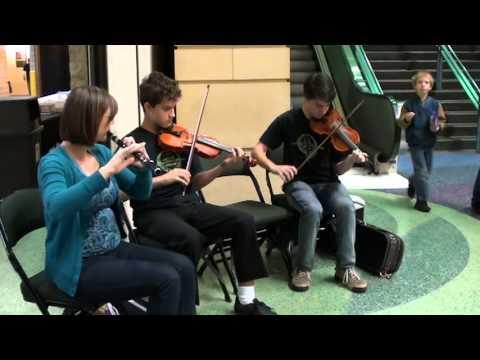 Center for Irish Music Advanced Student Ensemble at Minnesota Feis 2012
