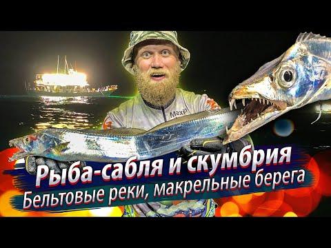 САБЛЕЗУБЫЕ АТАКУЮТ!!! Ночная морская рыбалка на рыбу-саблю и скумбрию. 2019/12