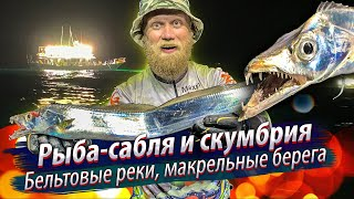 САБЛЕЗУБЫЕ АТАКУЮТ Ночная морская рыбалка на рыбу саблю и скумбрию 2019 12