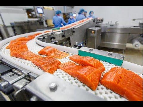 Уникальное производство и упаковка продуктов питания, современные станки и машины на новом уровне.