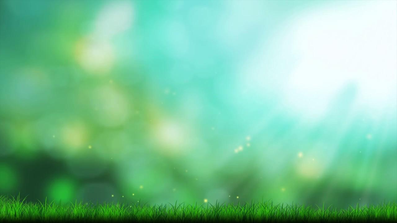 Fondo Primavera: Fondos Animados Luces De Primavera Full HD Animated