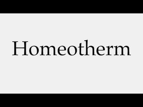 How to Pronounce Homeotherm
