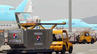 대한항공, 코로나에도 지난해 국제화물수송 세계 5위 /…
