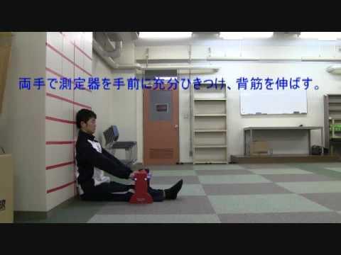 大阪体育大学体力プロフィールテスト長座体前屈