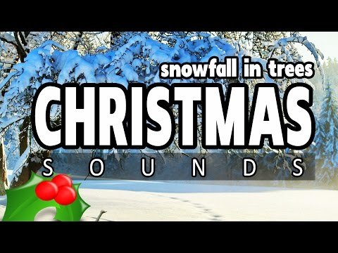 CHRISTMAS SNOWFALL in a FOREST ★ 5 HOURS ★ Best snow fall backing ambience for Christmas