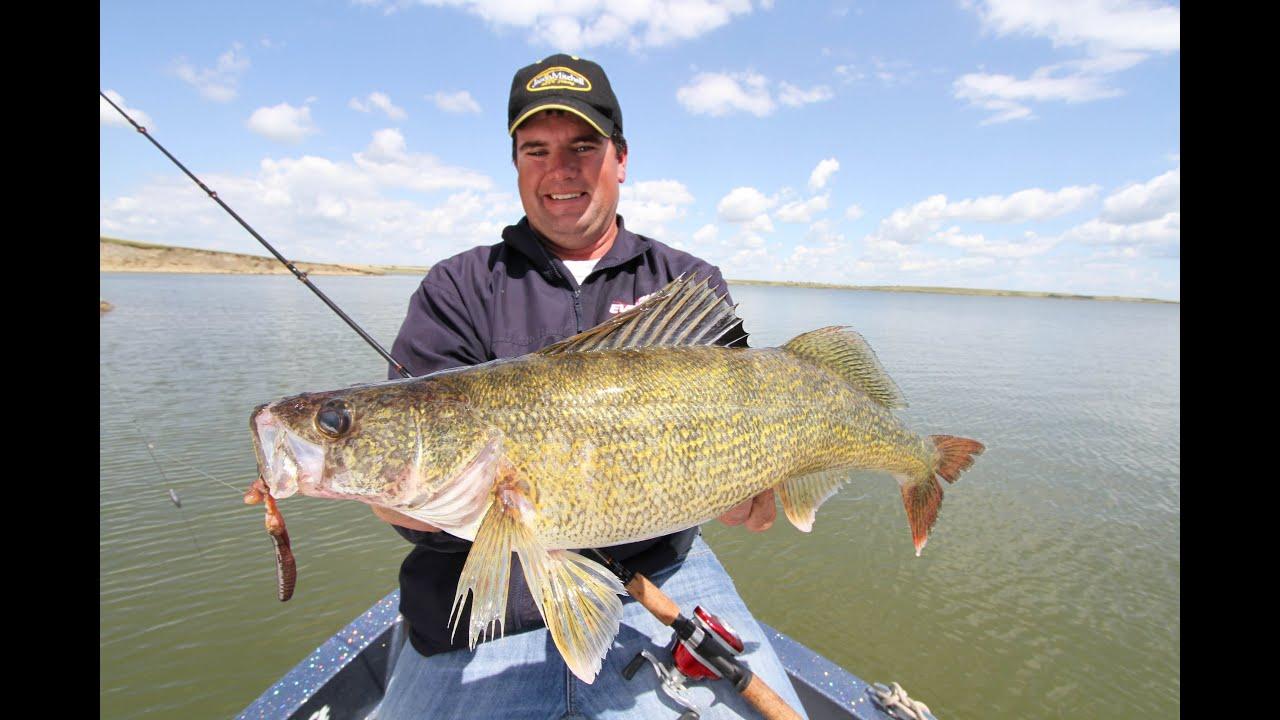 Bottom bouncers for walleyes youtube for Lake sakakawea fishing report