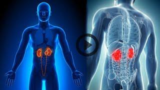 Заболевания почек виды болезней диагностика лечение и профилактика