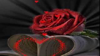 Rosen haben Dornen von Carmela Corren wmv