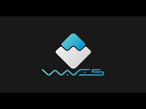 Waves Venture Fund, Bitmex BCH Liquidation, Fiat vs Crypto & CryptoKitties Breeders Cup