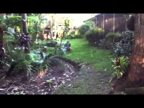 Brendan's  House & Garden