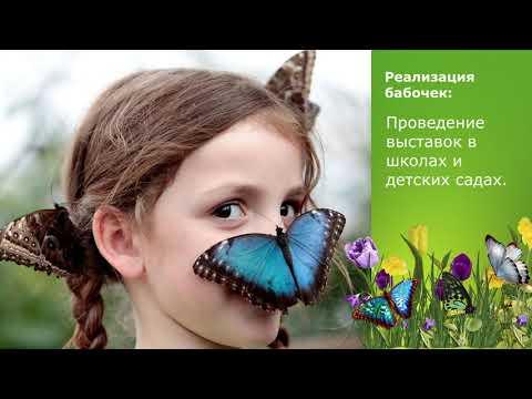 Презентация франшизы ФЕРМА-БАБОЧЕК.РФ