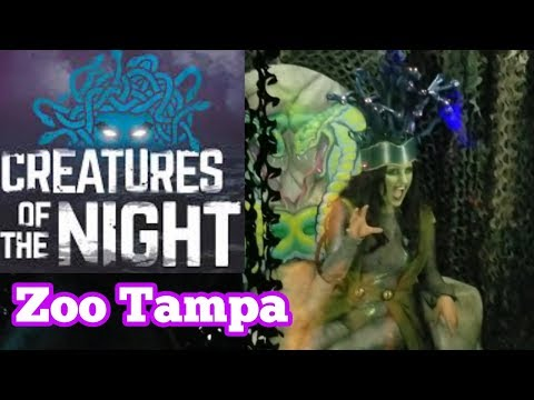 Creatures Of The Night Zoo Tampa At Lowry Park Halloween 2018