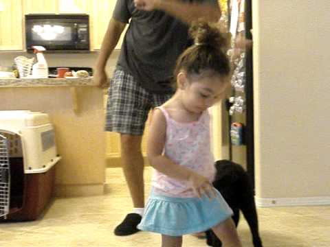Dad and Daughter Dance to Bjork