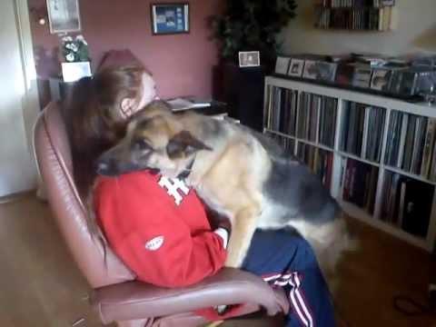 German shepherd hug