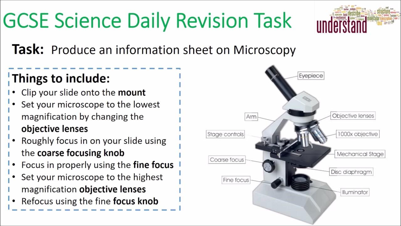 GCSE Science Daily Revision Task 5:  Microscopy - YouTube