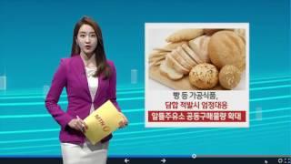 [TV로 보는 카드뉴스] 봄배추 2천톤 조기출하.. 가…