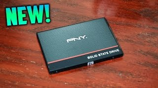 Best SSD For the Money | PNY CS1311 Review! Best Bang For Your Buck
