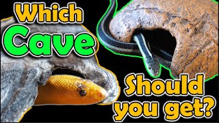 which-brand-of-cave-is-best-for-snakes-we-review-them