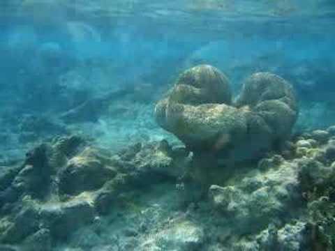 Images of Bonaire, Netherlands Antilles