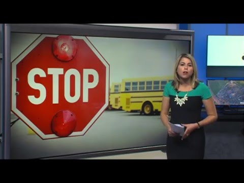 NBC2 Investigates: 618 SW Florida drivers pass stopped school buses in one day