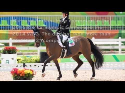Meet the US Equestrian Team&39;s Schroeter&39;s Romani
