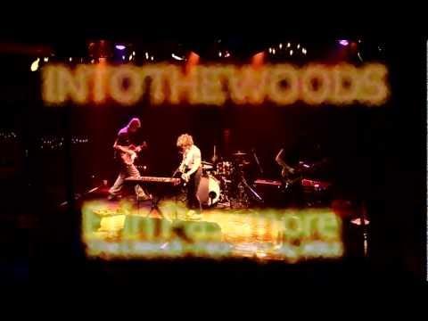 Erin Passmore - IntoThe Woods