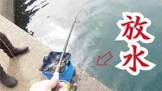 放水しながら足元ショアジギングは釣れる!