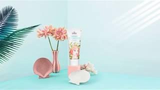 에델바이스 퓨어 선크림 - 자외선차단, 미백, 주름개선…