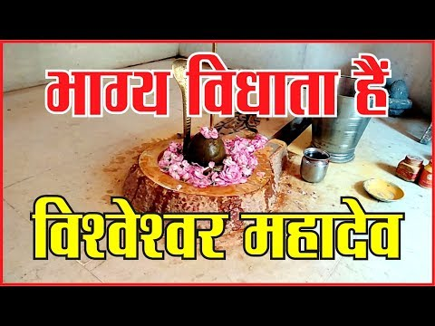 भाग्य विधाता हैं विश्वेश्वर महादेव, #dharam #God #aarti #mahakaal #sanidev #jyotirling