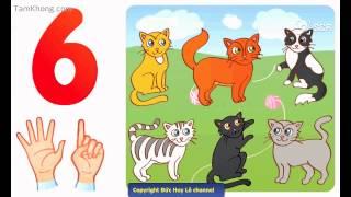 Video dạy bé học tập đếm từ 1 đến 10