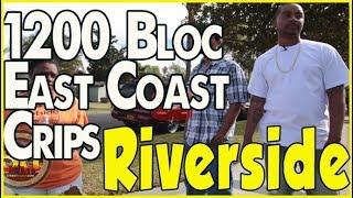 1200 Blocc East Coast Crips in Riverside with Lil Reece & Tiny Evil