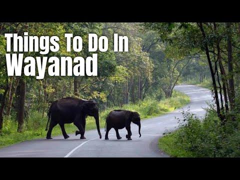 Ride to Wayanad ,Kerala -The God's Own Country  (ft Yamaha FZ16, Honda CBR )