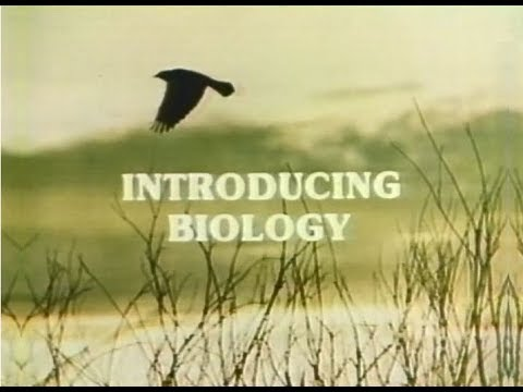 WYCC Channel 20 - Introducing Biology -