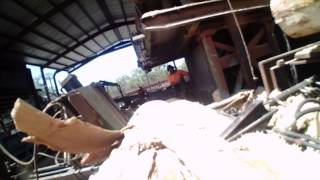 Cutting Wood At Sawmill