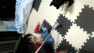 女の子の犬なのに たまちゃんです(^○^) 赤ちゃんがコロコロしているのを...
