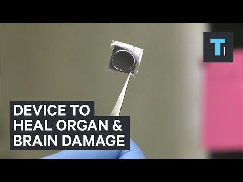 Scientists are testing out a device that could heal organs and brain injuries in seconds