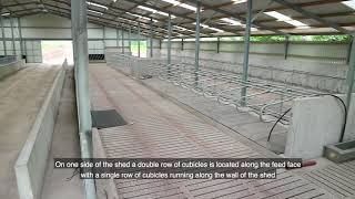 150 cubicle shed built through TAMS