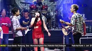 NGELABUR LANGIT -  ABR Live GEMVOLT