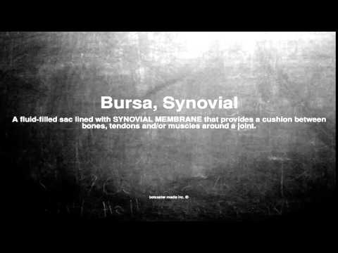 Medical vocabulary: What does Bursa, Synovial mean