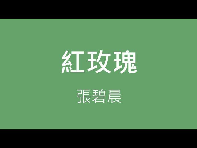 張碧晨 Zhang Bi Chen ─ 紅玫瑰【歌詞】
