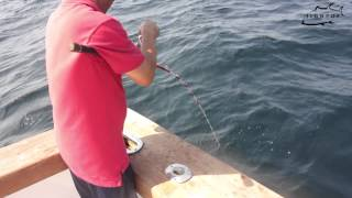 JIGNPOP: Fighting 60lb Bluefin with Light Jigging Rod (Magic Eye 571B-XXH) on the Hooked Up II